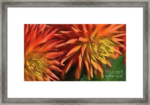 Bursting With Color Framed Print