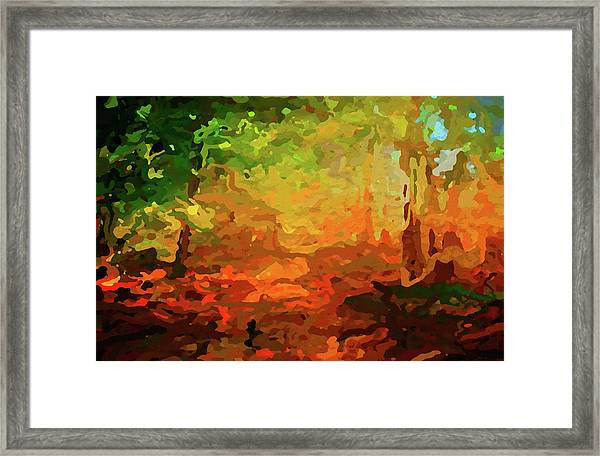 Bush Fire Framed Print