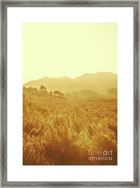 Bushland Of Western Dynamics Framed Print
