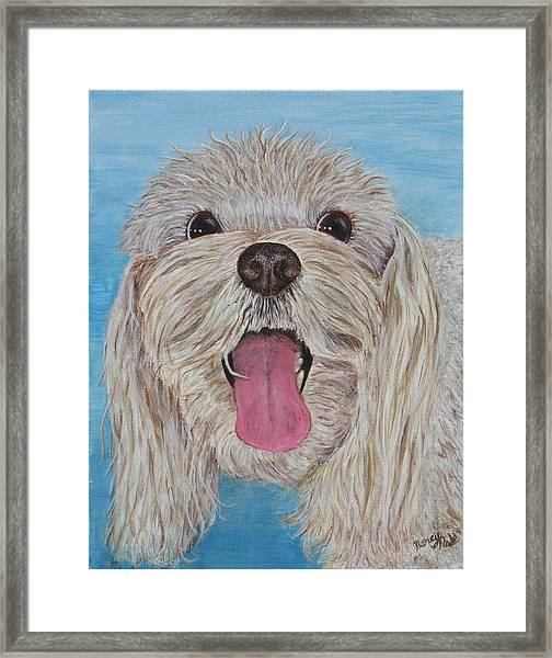 Framed Print featuring the painting Buster by Nancy Nale