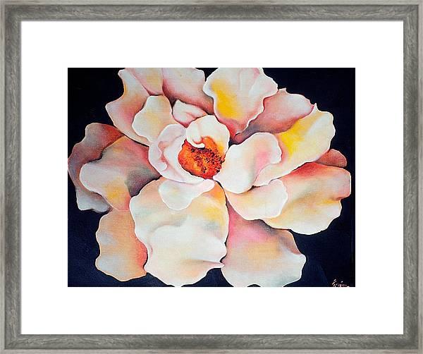 Butter Flower Framed Print