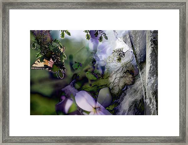 Butterfly Basket Framed Print