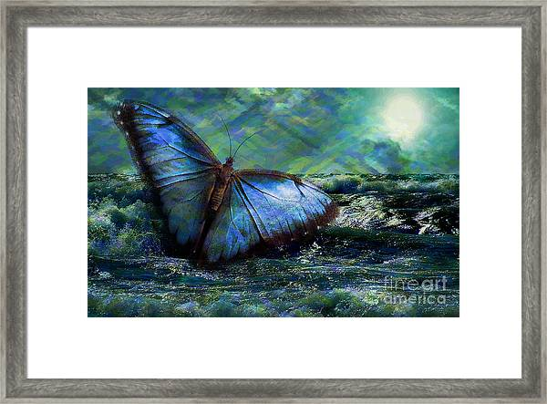 Butterfly Dreams 2015 Framed Print