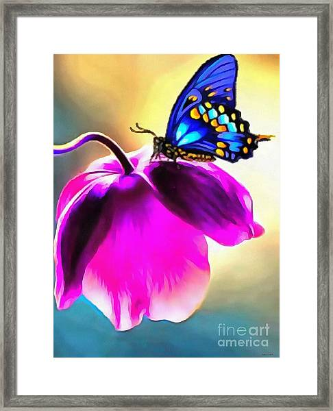 Butterfly Floral Framed Print
