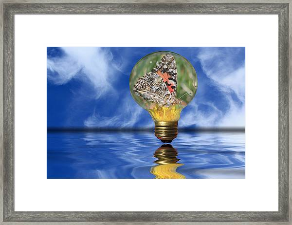 Butterfly In Lightbulb - Landscape Framed Print