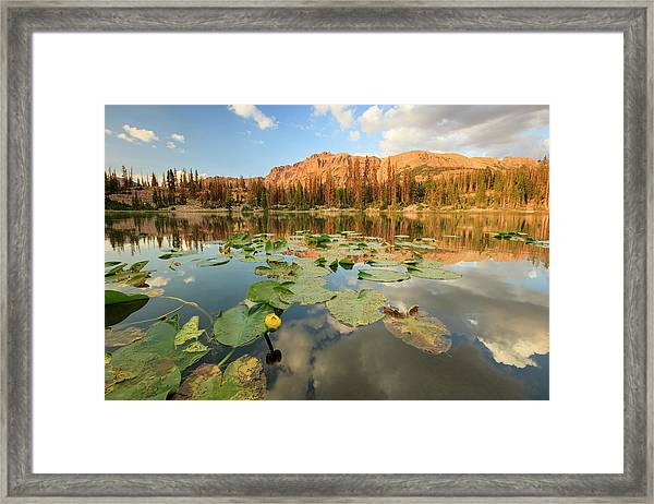 Butterfly Lake Framed Print