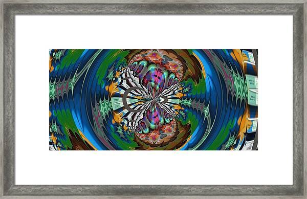 Butterfly Framed Print by Nancy Forever
