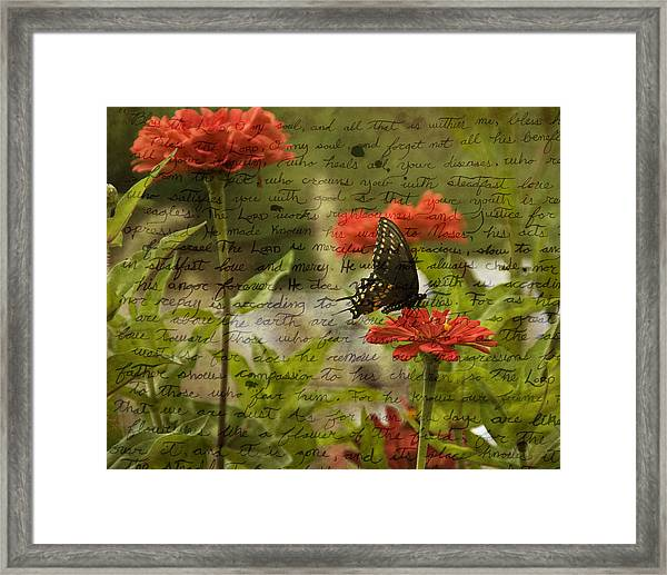 Butterfly Notes Framed Print