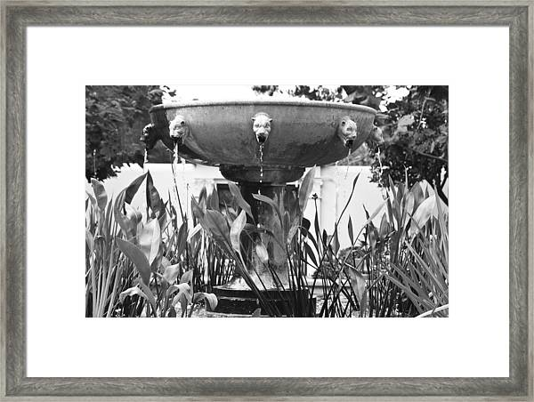 Bw Fountain At The Getty Villa Framed Print