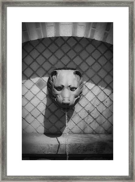 Bw Fountain Head Framed Print