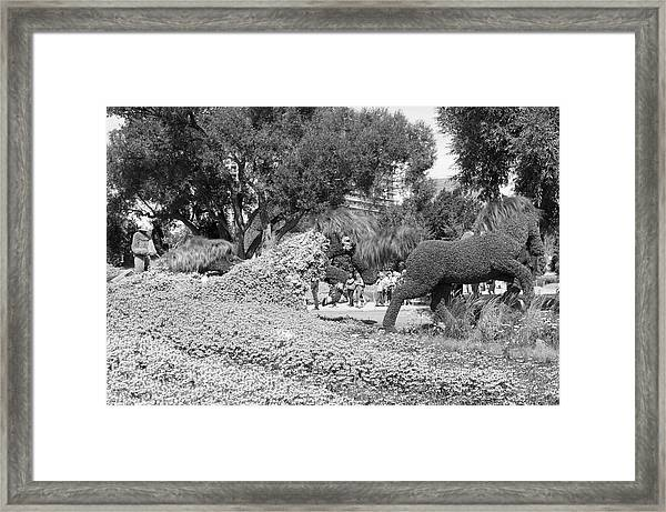 Bw Of Mosaicanada Scenery Framed Print