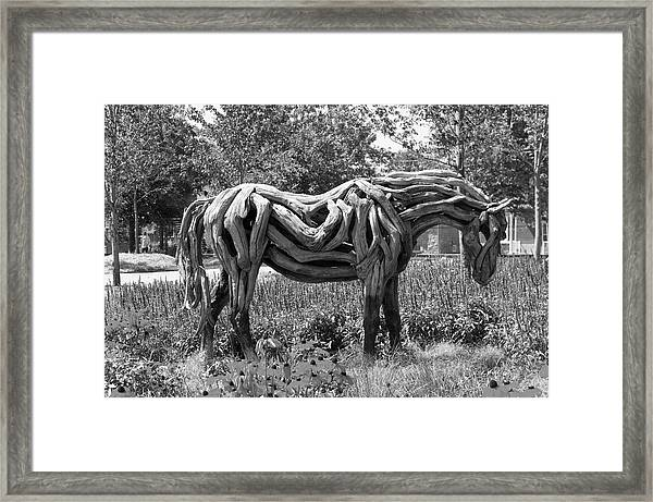 Bw Of Odyssey The Horse Sculpture Made Of Driftwood By Heather Jansch. Framed Print