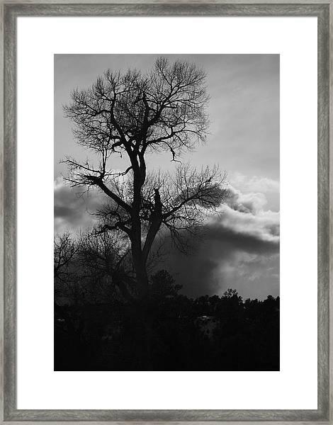 BW1 Framed Print by Wesley Hanna