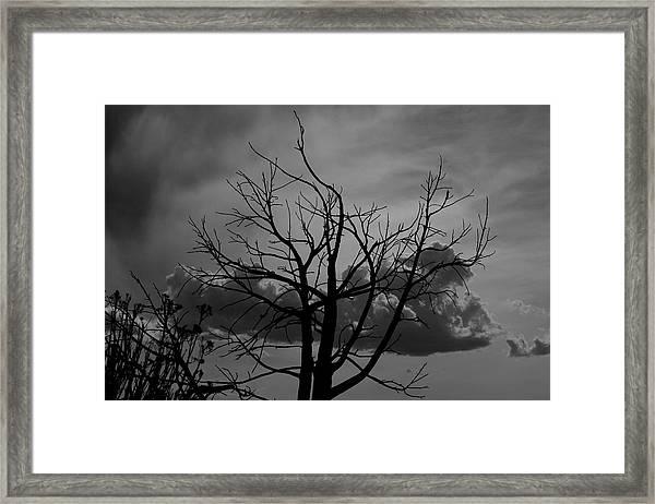 BW2 Framed Print by Wesley Hanna