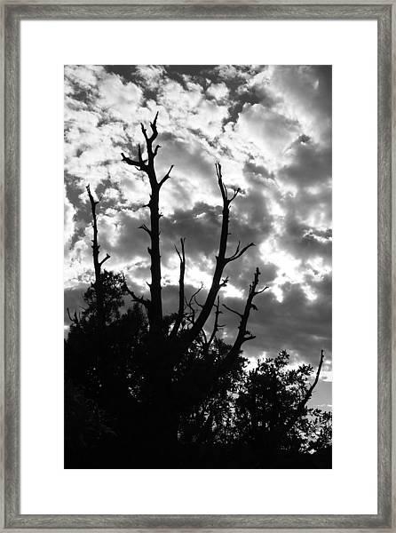 BW9 Framed Print by Wesley Hanna