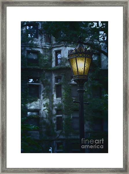 By Light Framed Print