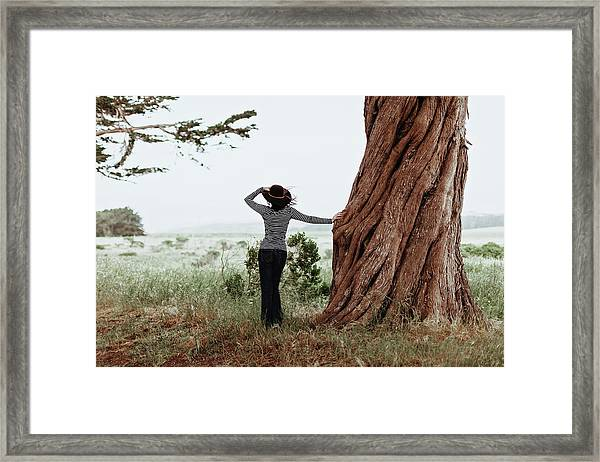 By The Cypress Framed Print