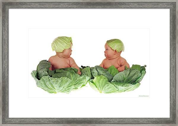 Cabbage Kids Framed Print
