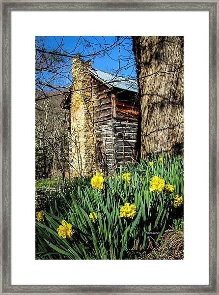 Cabin Spring Framed Print