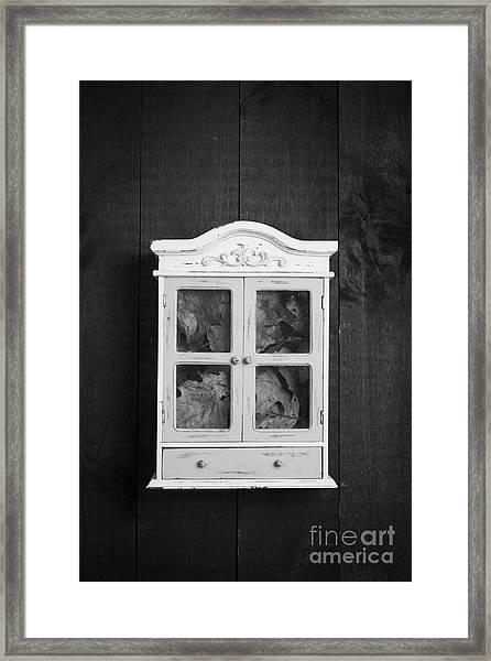 Cabinet Of Curiosity Framed Print