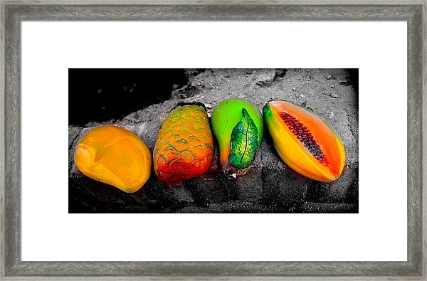 Cabo Fruit Art Framed Print
