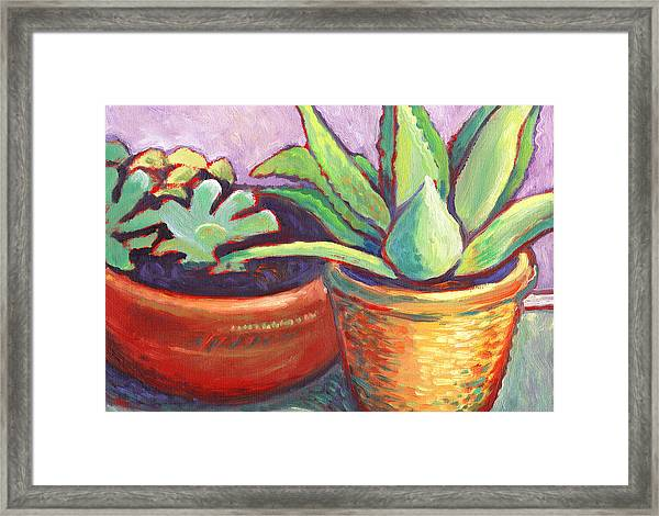 Cactus In Planters Framed Print