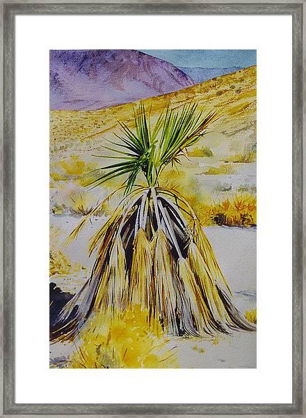 Cactus Skirt Framed Print
