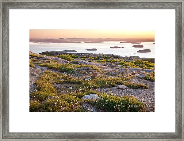 Cadillac Mountain View Framed Print