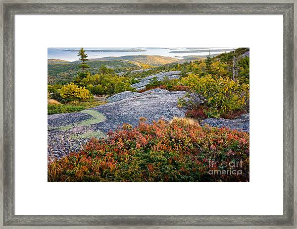 Framed Print featuring the photograph Cadillac Rock Garden by Susan Cole Kelly