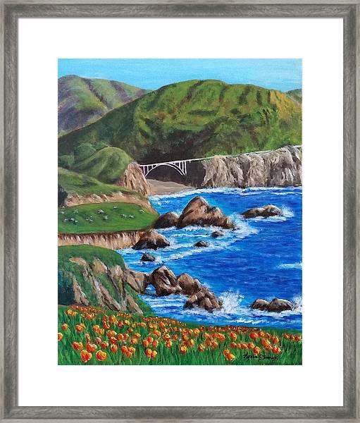 California Coastline Framed Print