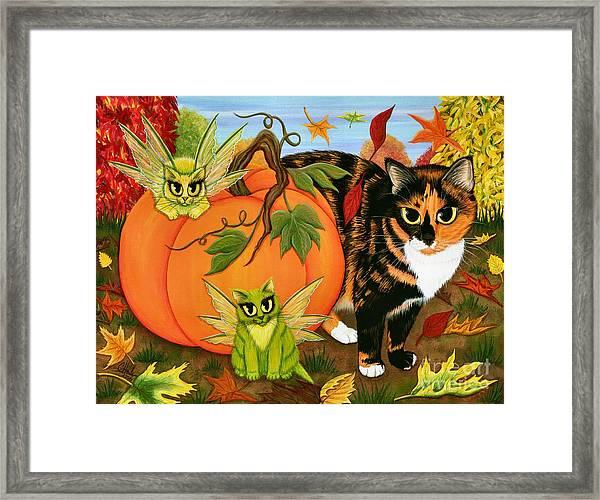 Calico's Mystical Pumpkin Framed Print