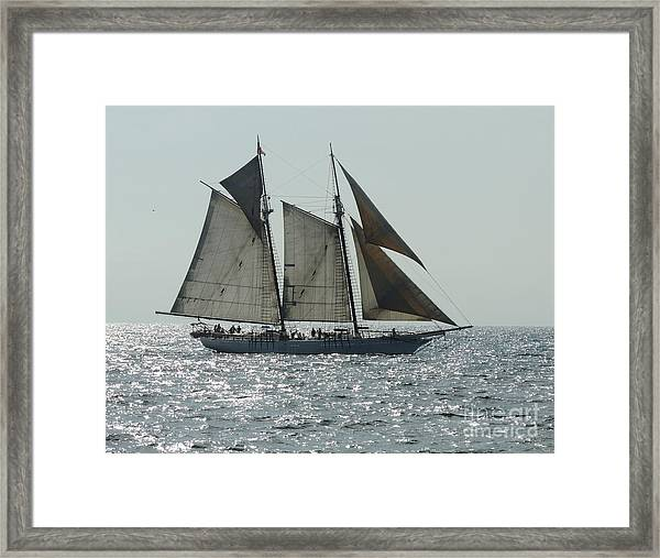 California Dreaming 1 Framed Print