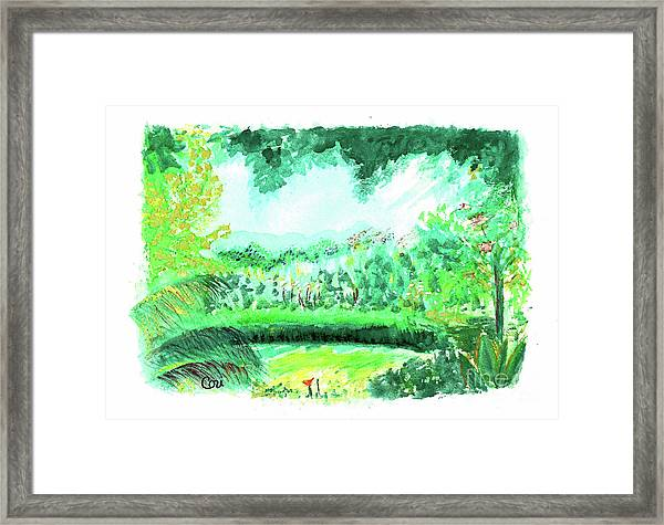 California Garden Framed Print