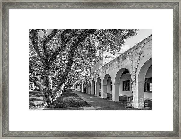 California Institute Of Technology Campus Trees Framed Print by University Icons