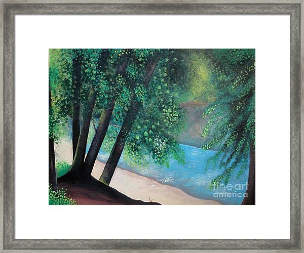 California Magic Framed Print