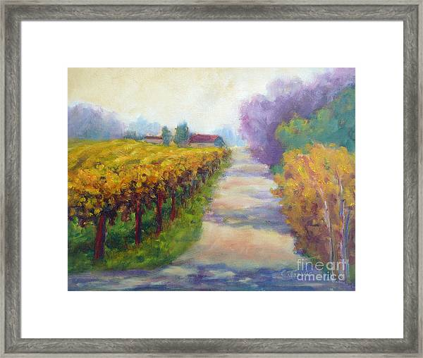 California Wine Country Framed Print