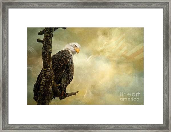 Call Of Honor Framed Print