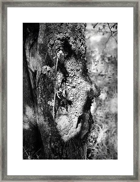 Call Of The Elder Framed Print