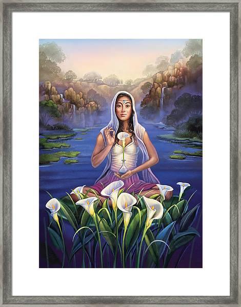 Calla Lily - Be Still Framed Print