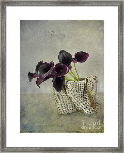 Calla's Bag Framed Print