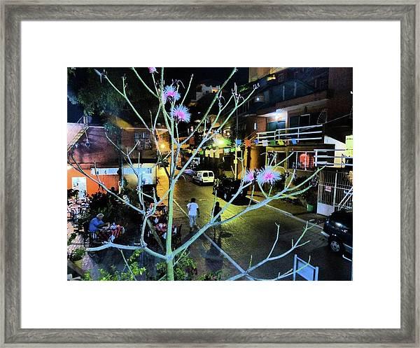 Calle Adelita Framed Print
