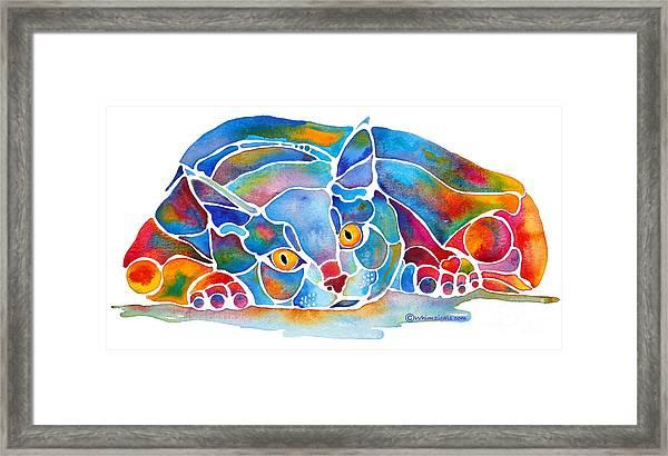 Calypso Cat Framed Print
