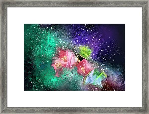 Camellias In A Galaxy Far Far Away Framed Print