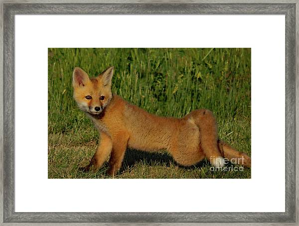 Can You Do This Framed Print