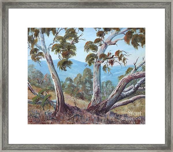 Canberra Hills Framed Print