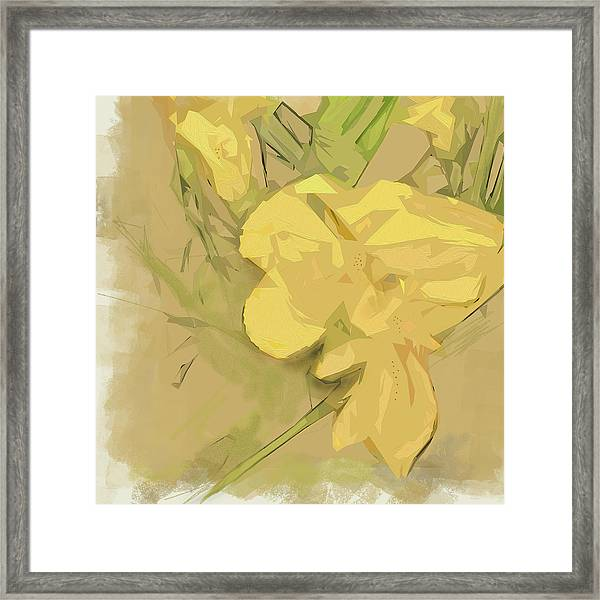 Framed Print featuring the photograph Canna by Gina Harrison