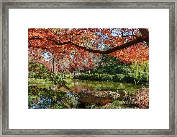 Canopy Of Fire Framed Print