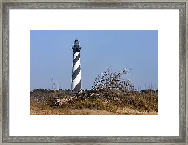 Cape Hatteras Lighthouse With Driftwood Framed Print