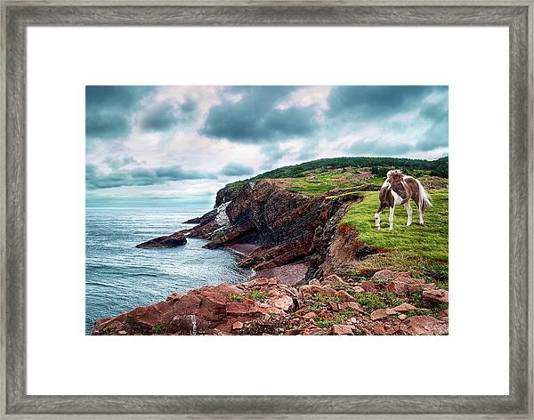 Cape St. Lawrence Framed Print