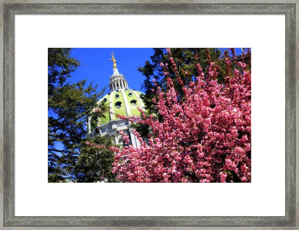 Capitol In Bloom Framed Print